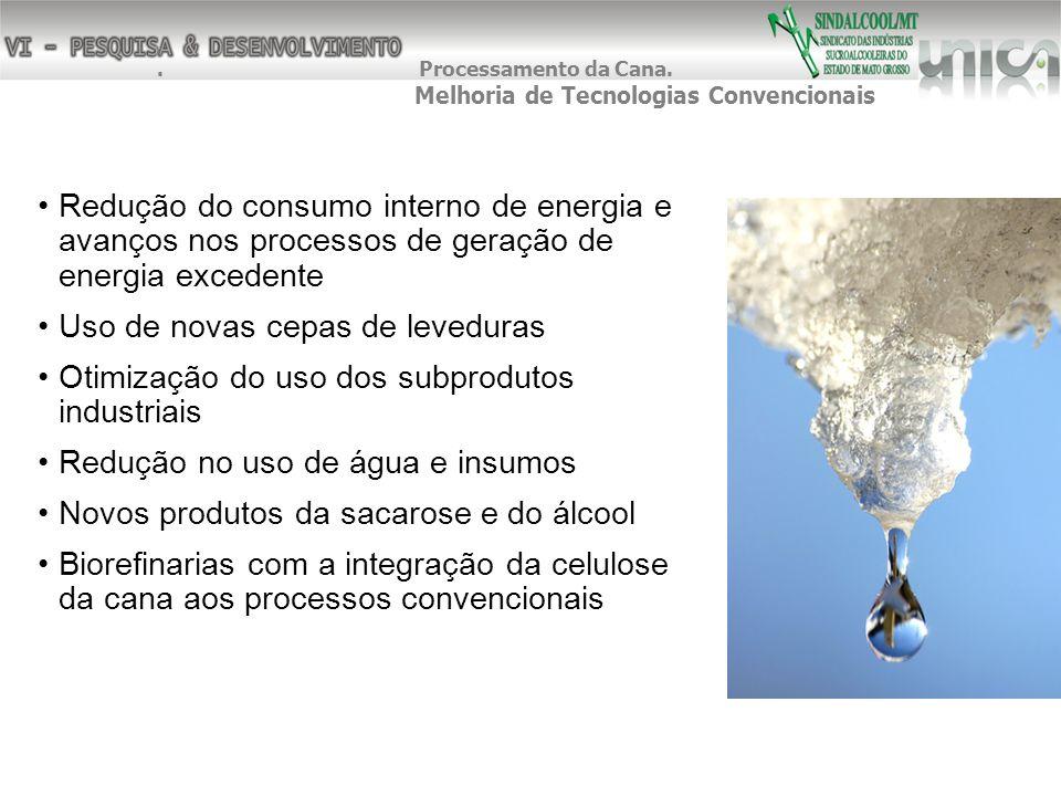 Redução do consumo interno de energia e avanços nos processos de geração de energia excedente Uso de novas cepas de leveduras Otimização do uso dos su