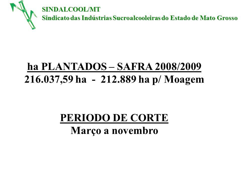 ha PLANTADOS – SAFRA 2008/2009 216.037,59 ha - 212.889 ha p/ Moagem PERIODO DE CORTE Março a novembro SINDALCOOL/MT Sindicato das Indústrias Sucroalco