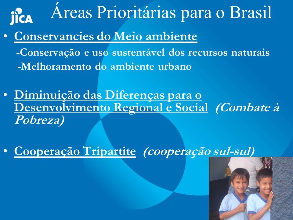 Meio Ambiente Uso Sustentável de Recursos Florestais no Estado do Amapá (AP) Conservação de Ecossistemas do Cerrado (TO) Desenvolvimento de Técnicas de Revegetação em Áreas Degradadas na região Semi-árida do Nordeste do Brasil (RN) Inclusao Social por meio de Incentivo a Producao de Oleaginosas para a Geracao de Bioenergia na Regiao Oeste do RN