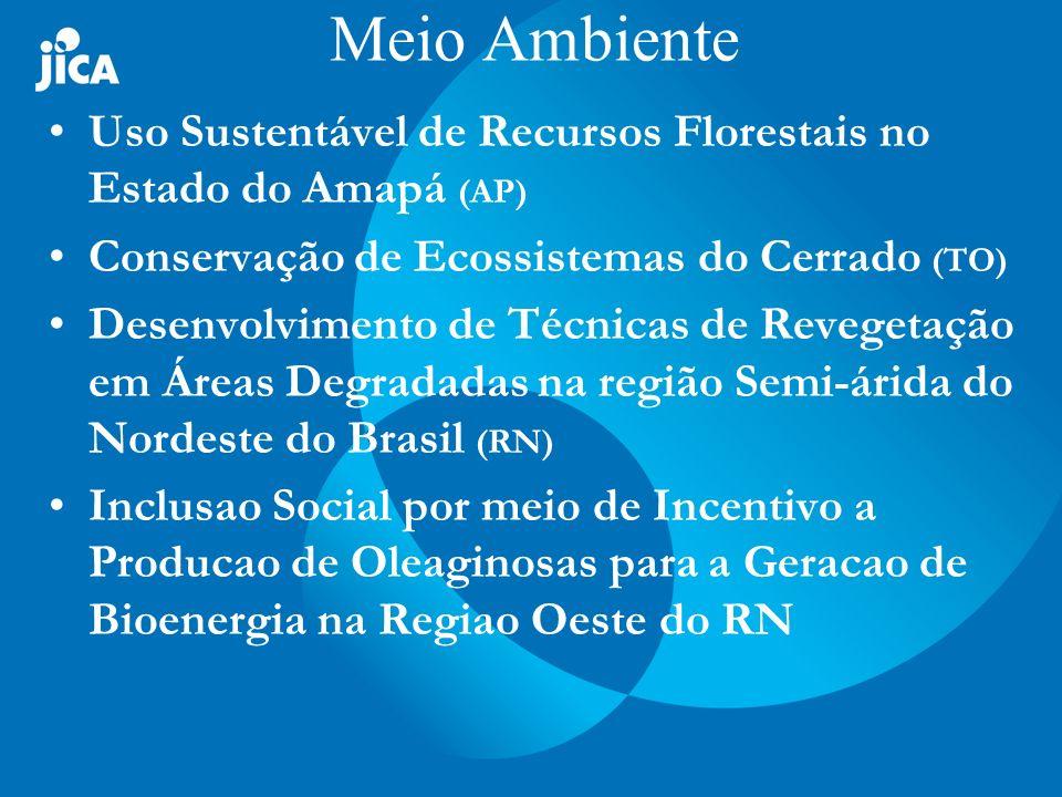 Uso Sustentável dos Recursos Florestais em Áreas de Várzea no Estado do Amapá 02.11.2005 a 01.05.2008 Objetivo do Projeto: Aperfeiçoamento na metodologia de utilização de recursos florestais que contribuem no melhoramento do meio de vida dos ribeirinhos nas várzeas da área-objeto no Estado do Amapá.
