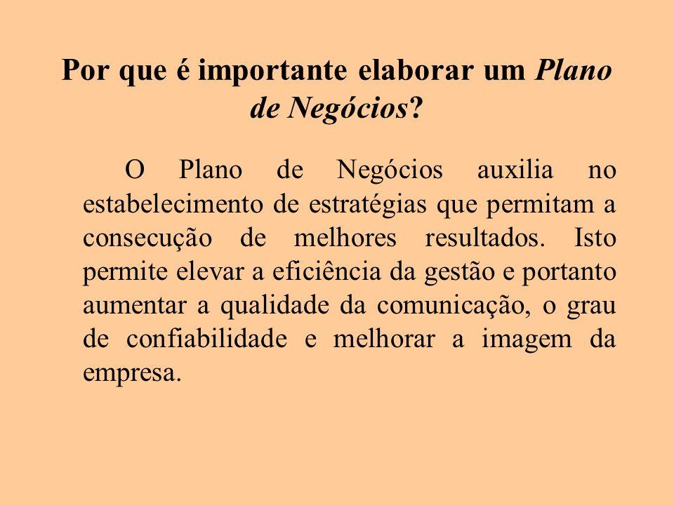 Por que é importante elaborar um Plano de Negócios? O Plano de Negócios auxilia no estabelecimento de estratégias que permitam a consecução de melhore