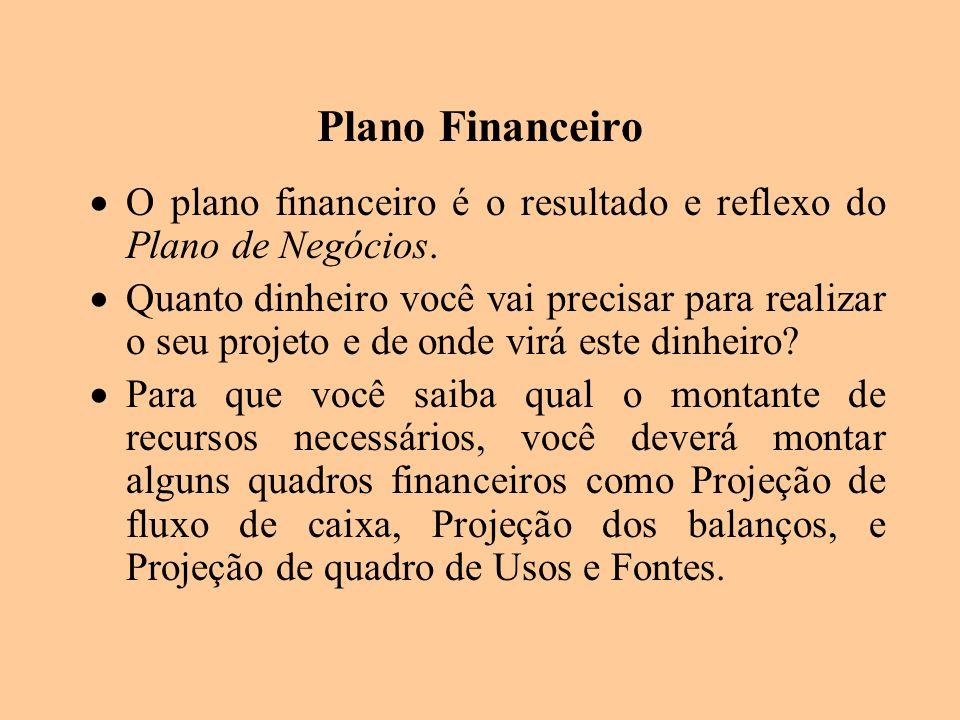 Plano Financeiro O plano financeiro é o resultado e reflexo do Plano de Negócios. Quanto dinheiro você vai precisar para realizar o seu projeto e de o