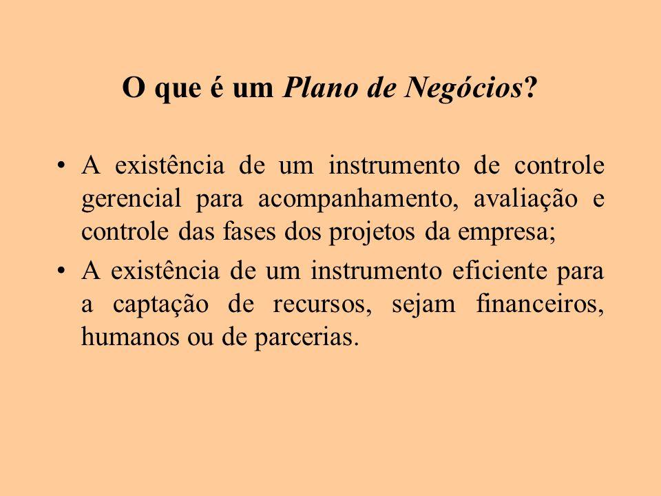 O que é um Plano de Negócios? A existência de um instrumento de controle gerencial para acompanhamento, avaliação e controle das fases dos projetos da