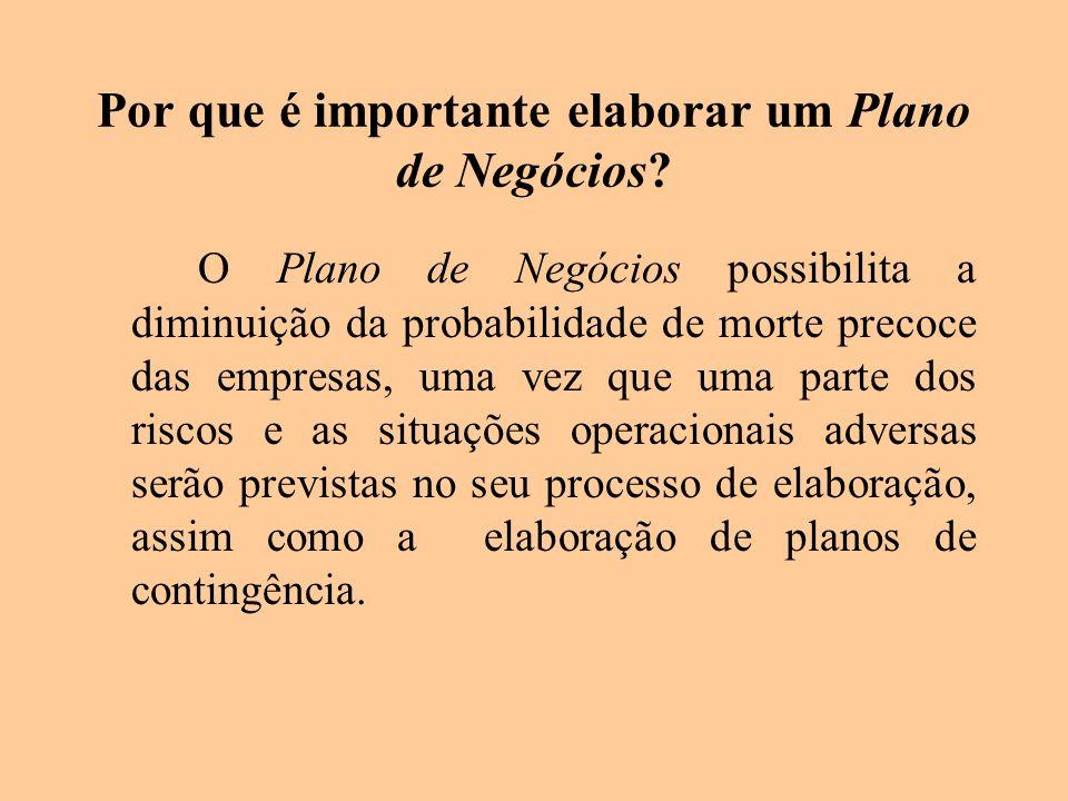 Por que é importante elaborar um Plano de Negócios? O Plano de Negócios possibilita a diminuição da probabilidade de morte precoce das empresas, uma v