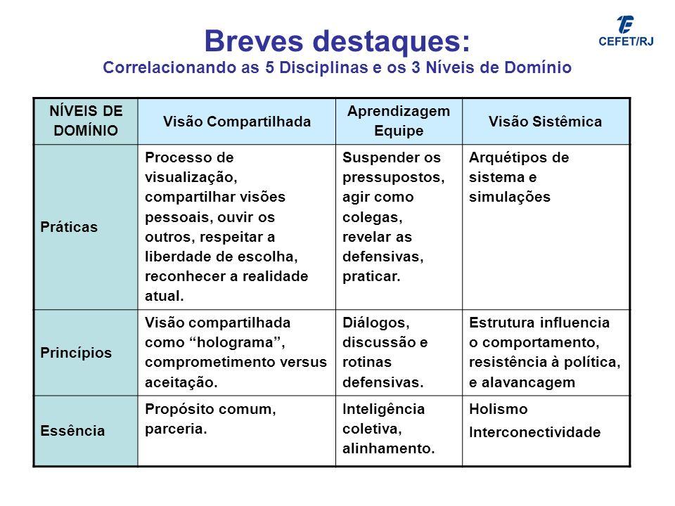 Breves destaques: Correlacionando as 5 Disciplinas e os 3 Níveis de Domínio NÍVEIS DE DOMÍNIO Visão Compartilhada Aprendizagem Equipe Visão Sistêmica