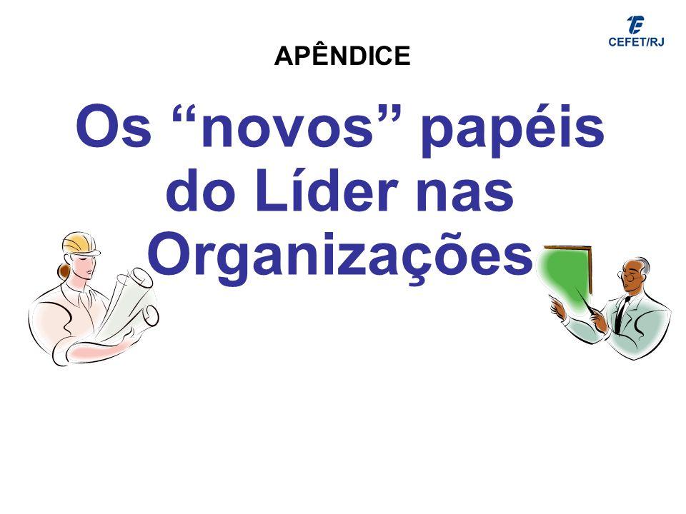 Os novos papéis do Líder nas Organizações APÊNDICE