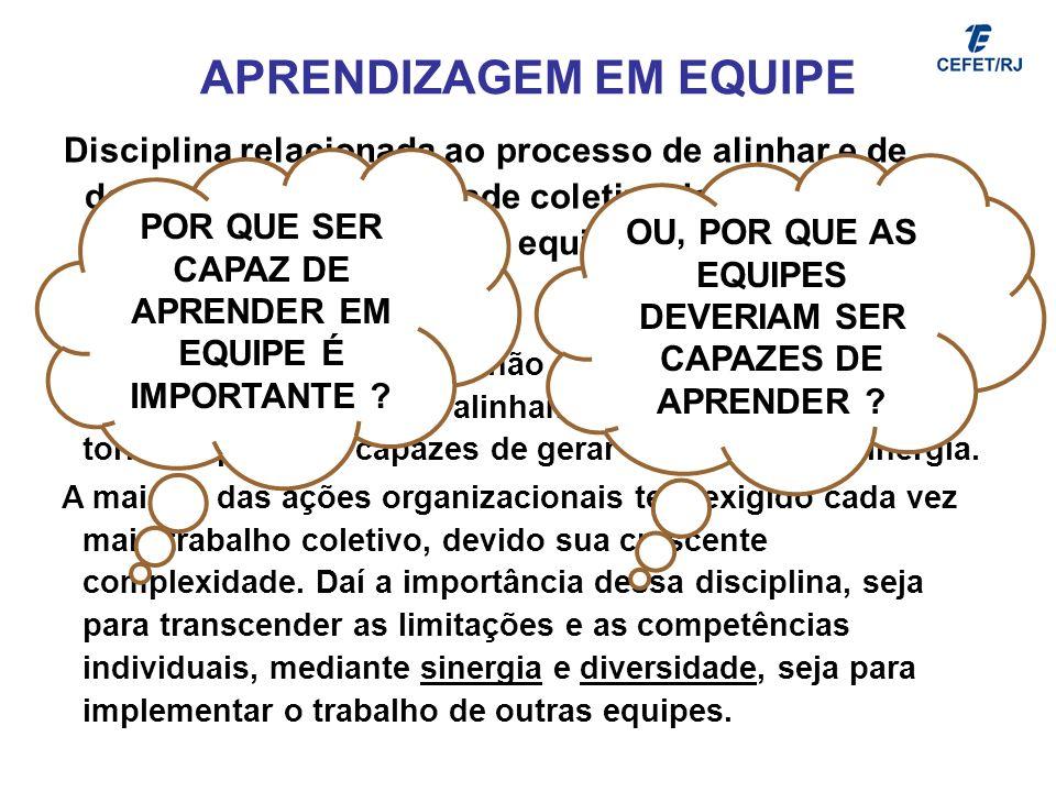 APRENDIZAGEM EM EQUIPE Disciplina relacionada ao processo de alinhar e de desenvolver a capacidade coletiva de se criar os resultados definidos pela e