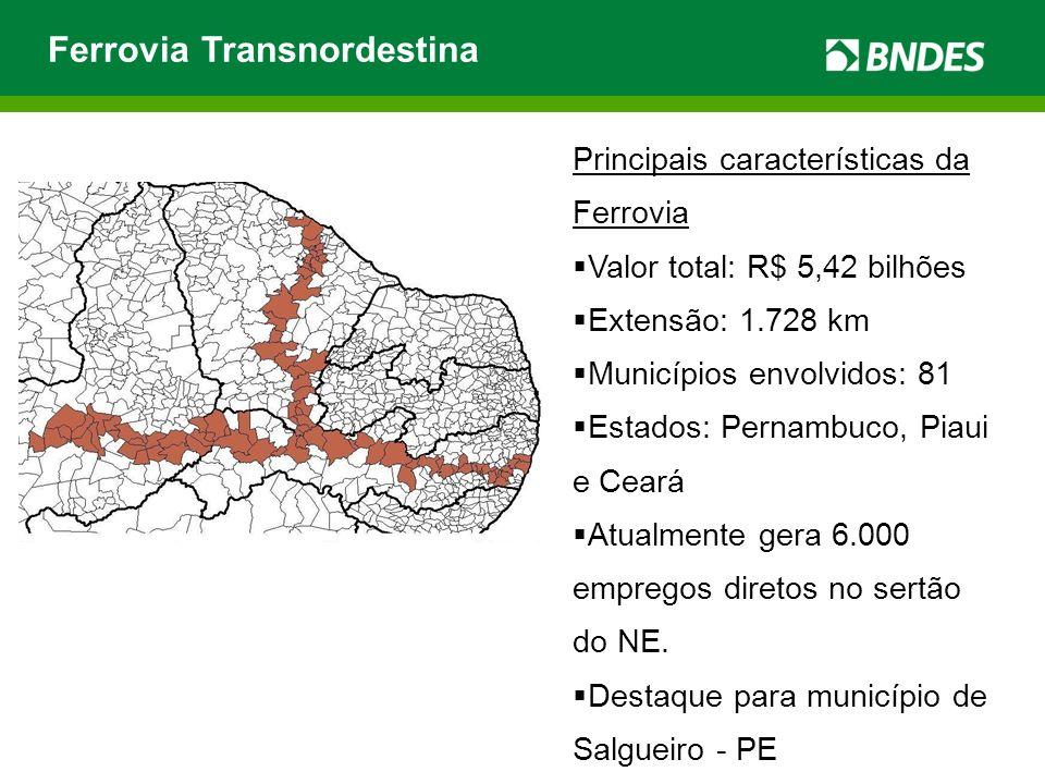 Ferrovia Transnordestina Principais características da Ferrovia Valor total: R$ 5,42 bilhões Extensão: 1.728 km Municípios envolvidos: 81 Estados: Pernambuco, Piaui e Ceará Atualmente gera 6.000 empregos diretos no sertão do NE.