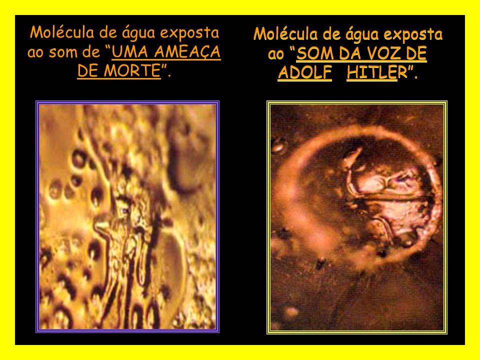 Molécula de água exposta ao SOM DA VOZ DE ADOLF HITLER. Molécula de água exposta ao som de UMA AMEAÇA DE MORTE.