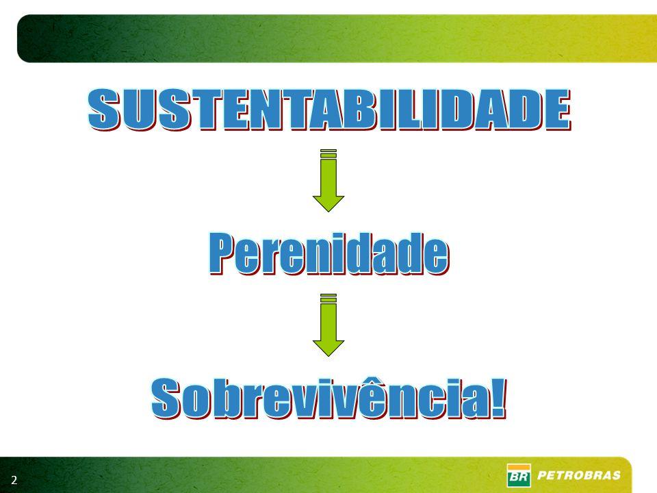 13 PARTICIPAÇÃO NAS EMISSÕES MUNDIAIS ONU, 2010 Participação em 2006 Emissões 2006/ 2005