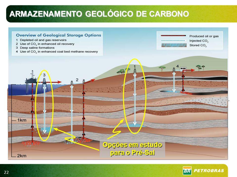 22 Opções em estudo para o Pré-Sal ARMAZENAMENTO GEOLÓGICO DE CARBONO