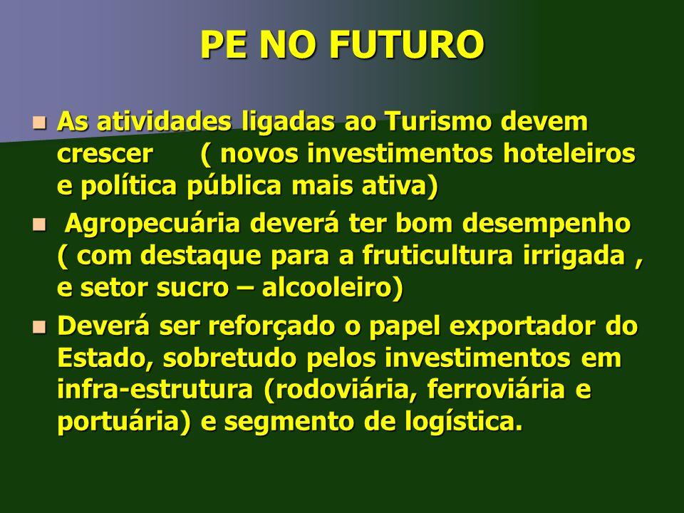 PE NO FUTURO As atividades ligadas ao Turismo devem crescer ( novos investimentos hoteleiros e política pública mais ativa) As atividades ligadas ao T