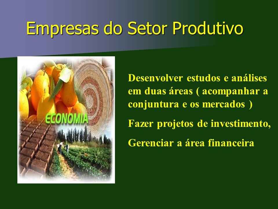 Empresas do Setor Produtivo Desenvolver estudos e análises em duas áreas ( acompanhar a conjuntura e os mercados ) Fazer projetos de investimento, Ger