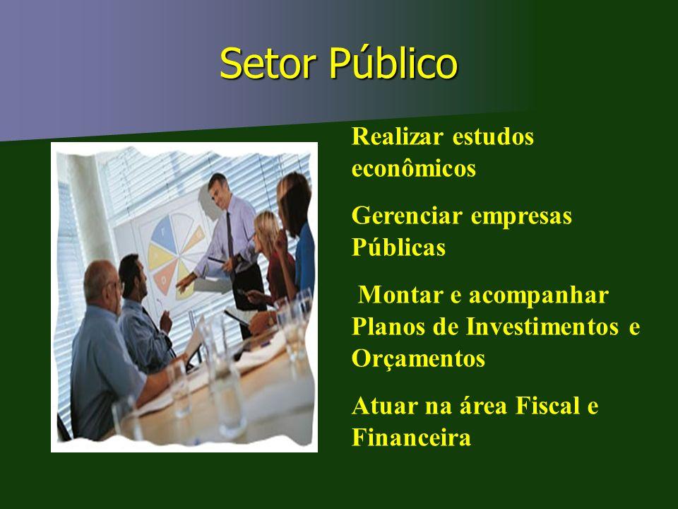 Setor Público Realizar estudos econômicos Gerenciar empresas Públicas Montar e acompanhar Planos de Investimentos e Orçamentos Atuar na área Fiscal e