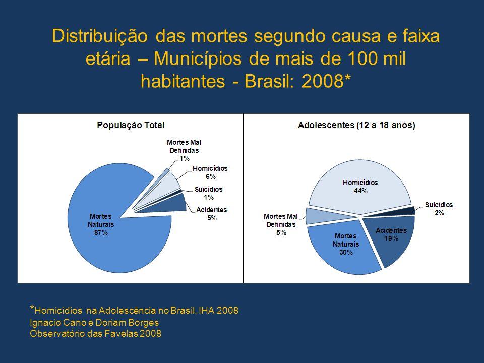 Distribuição das mortes segundo causa e faixa etária – Municípios de mais de 100 mil habitantes - Brasil: 2008* * Homicídios na Adolescência no Brasil