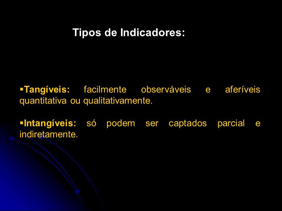 Indicadores Sociais Validade: A validade de um indicador corresponde ao grau de proximidade entre o conceito e a medida. Confiabilidade: grau de preci