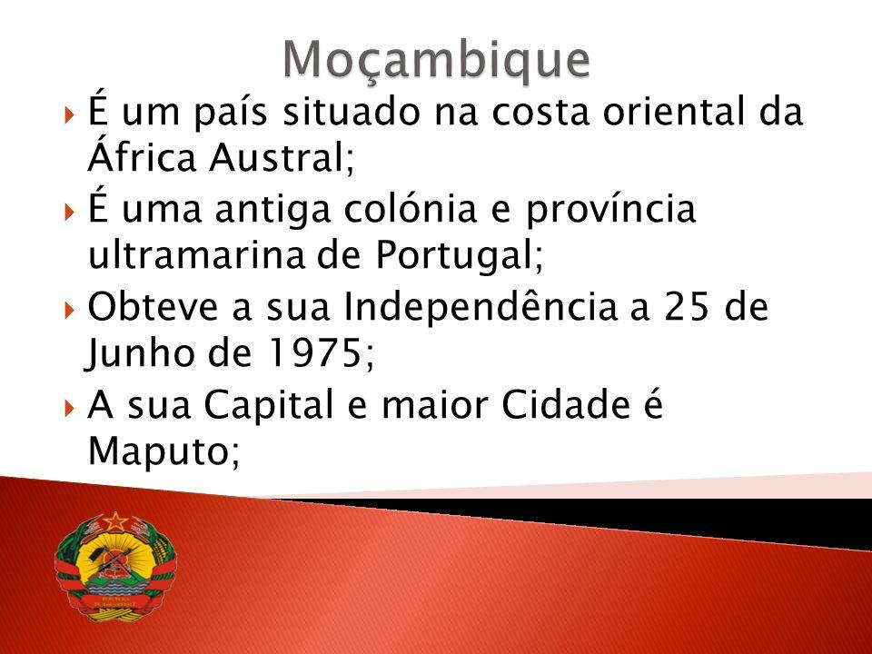 Área total 801 590 Km2 ; População estimada 20 069 738 habitantes (2007); PIB US$ 18,6 biliões; Língua Oficial Português; Moeda é o Metical; Clima Subtropial; 10 Províncias; 128 Distritos; e 43 Municípios.