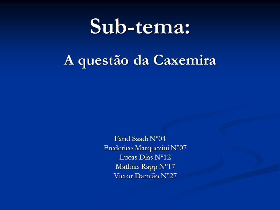 Sub-tema: A questão da Caxemira Farid Saadi Nº04 Frederico Marquezini Nº07 Lucas Dias Nº12 Mathias Rapp Nº17 Victor Damião Nº27