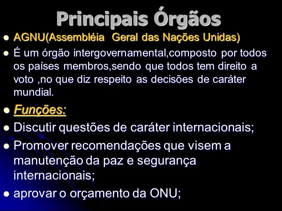 Principais Órgãos AGNU(Assembléia Geral das Nações Unidas) AGNU(Assembléia Geral das Nações Unidas) É um órgão intergovernamental,composto por todos o