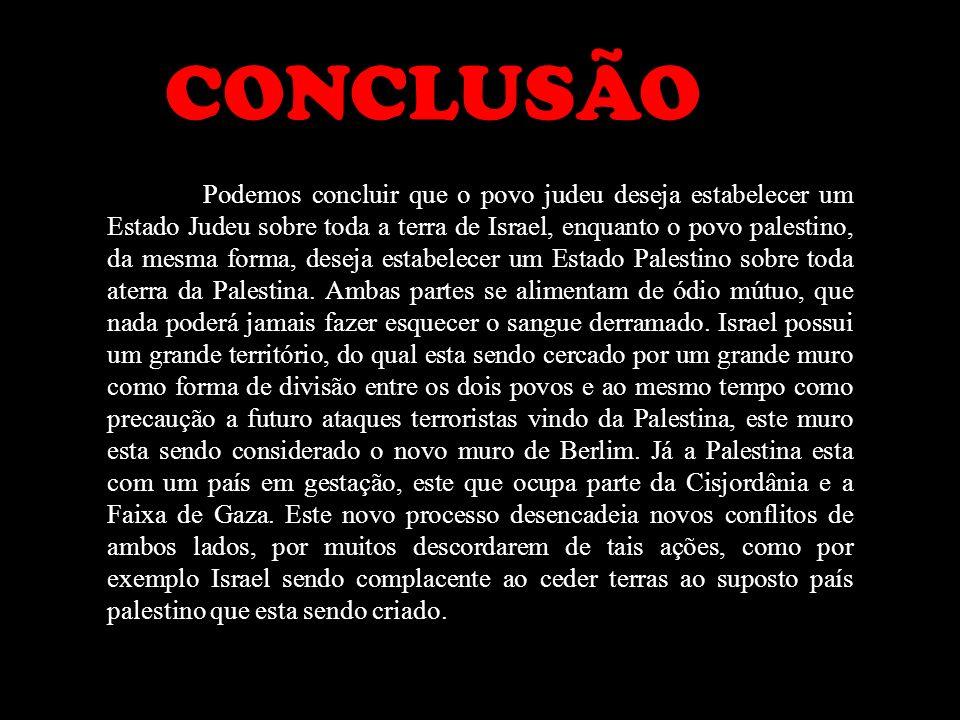 CONCLUSÃO Podemos concluir que o povo judeu deseja estabelecer um Estado Judeu sobre toda a terra de Israel, enquanto o povo palestino, da mesma forma