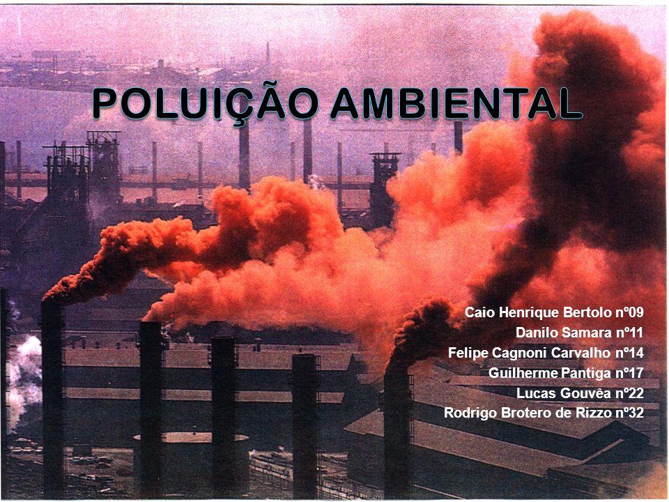 Medidas Implantadas no País Tendo em vista os impactos ambientais, todos os governos têm implantado medidas para a redução da poluição.