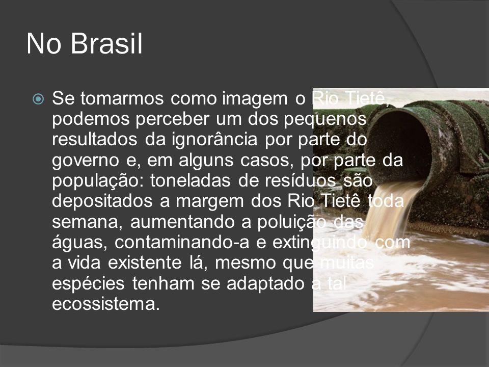 No Brasil Se tomarmos como imagem o Rio Tietê, podemos perceber um dos pequenos resultados da ignorância por parte do governo e, em alguns casos, por