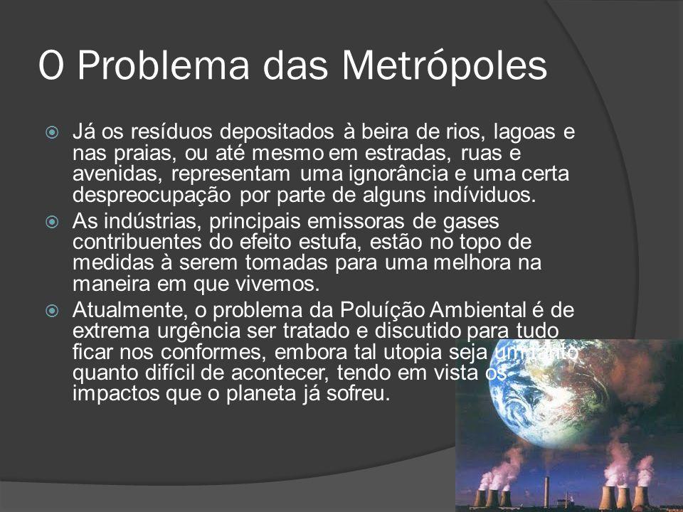 O Problema das Metrópoles Já os resíduos depositados à beira de rios, lagoas e nas praias, ou até mesmo em estradas, ruas e avenidas, representam uma
