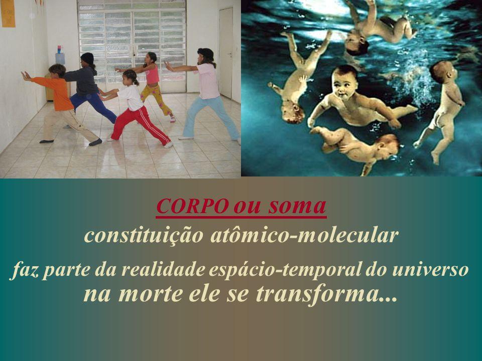 CORPO ou soma constituição atômico-molecular faz parte da realidade espácio-temporal do universo na morte ele se transforma...