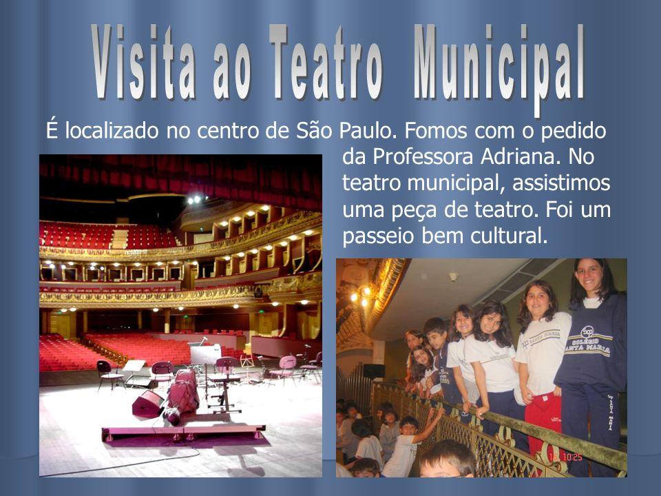 É localizado no centro de São Paulo. Fomos com o pedido da Professora Adriana. No teatro municipal, assistimos uma peça de teatro. Foi um passeio bem