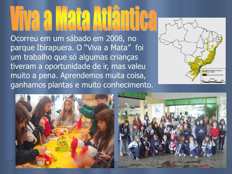 Ocorreu em um sábado em 2008, no parque Ibirapuera. O Viva a Mata foi um trabalho que só algumas crianças tiveram a oportunidade de ir, mas valeu muit