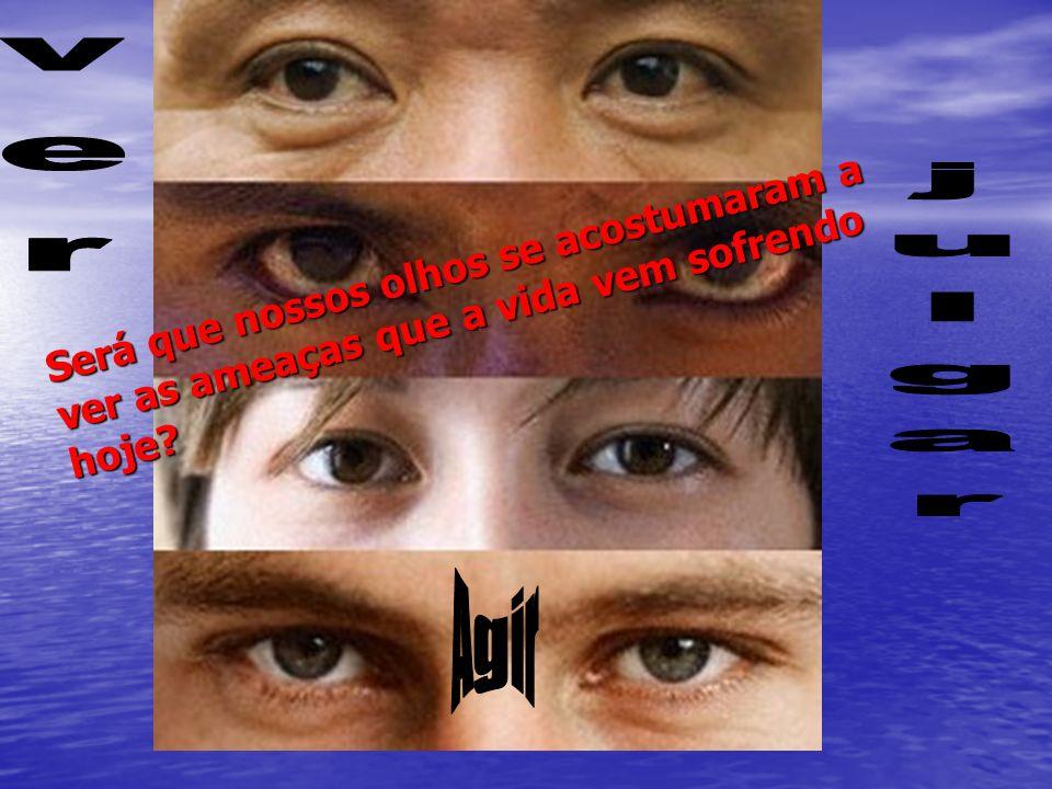 Será que nossos olhos se acostumaram a ver as ameaças que a vida vem sofrendo hoje?