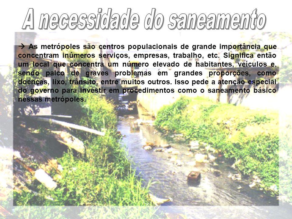 As metrópoles são centros populacionais de grande importância que concentram inúmeros serviços, empresas, trabalho, etc.