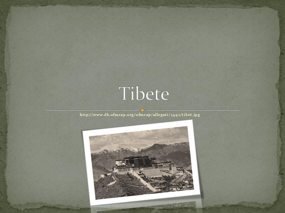 http://www.db.ofmcap.org/ofmcap/allegati/2492/tibet.jpg