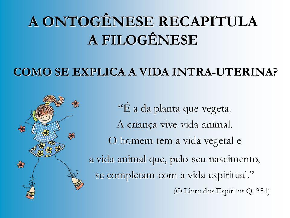 09 MESES 09 MESES Recapitulação biológica de tudo já vivido nos reinos vegetal e animal.