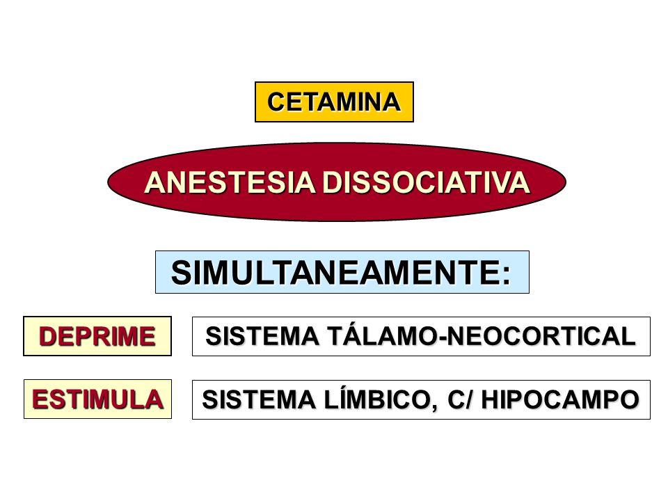 CETAMINA ANESTESIA DISSOCIATIVA DEPRIME SISTEMA TÁLAMO-NEOCORTICAL ESTIMULA SISTEMA LÍMBICO, C/ HIPOCAMPO SIMULTANEAMENTE: