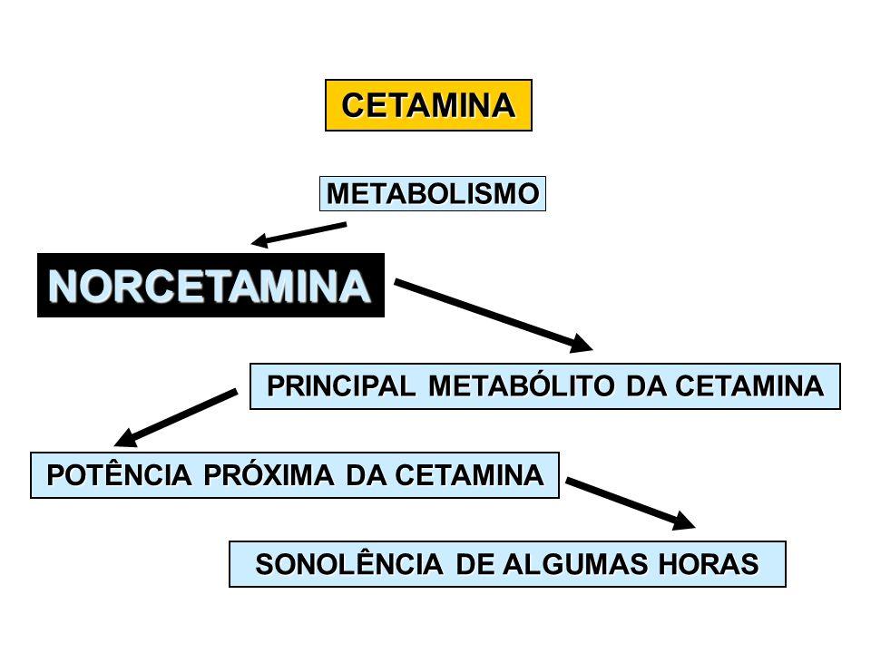 CETAMINA NORCETAMINA PRINCIPAL METABÓLITO DA CETAMINA POTÊNCIA PRÓXIMA DA CETAMINA SONOLÊNCIA DE ALGUMAS HORAS METABOLISMO