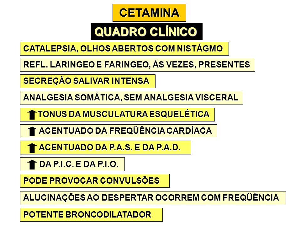 CETAMINA QUADRO CLÍNICO CATALEPSIA, OLHOS ABERTOS COM NISTÁGMO REFL. LARINGEO E FARINGEO, ÀS VEZES, PRESENTES SECREÇÃO SALIVAR INTENSA ANALGESIA SOMÁT