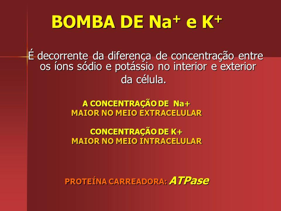 Ocorre contra o gradiente de concentração com gasto de energia (ATP). Exemplo: Exemplo: BOMBA DE Na + ( Sódio ) e K + ( Potássio)