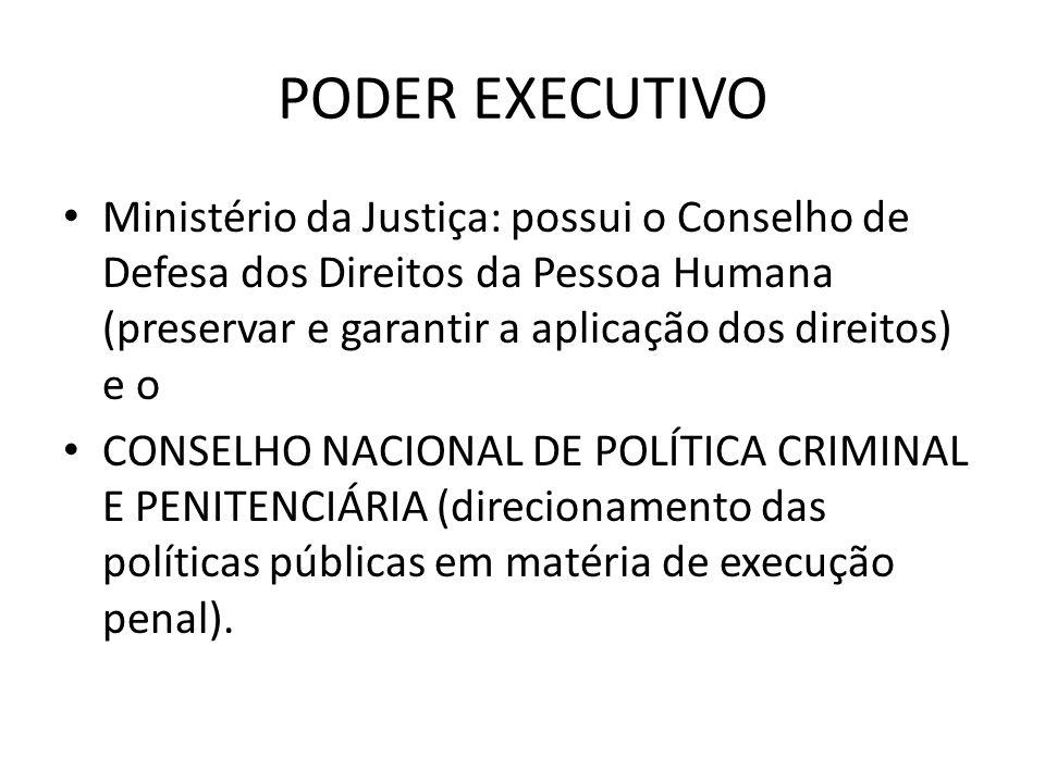 PODER EXECUTIVO Ministério da Justiça: possui o Conselho de Defesa dos Direitos da Pessoa Humana (preservar e garantir a aplicação dos direitos) e o C