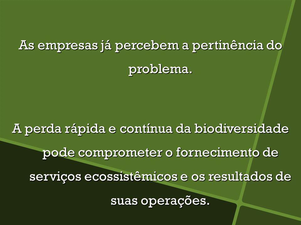 As empresas já percebem a pertinência do problema. A perda rápida e contínua da biodiversidade pode comprometer o fornecimento de serviços ecossistêmi