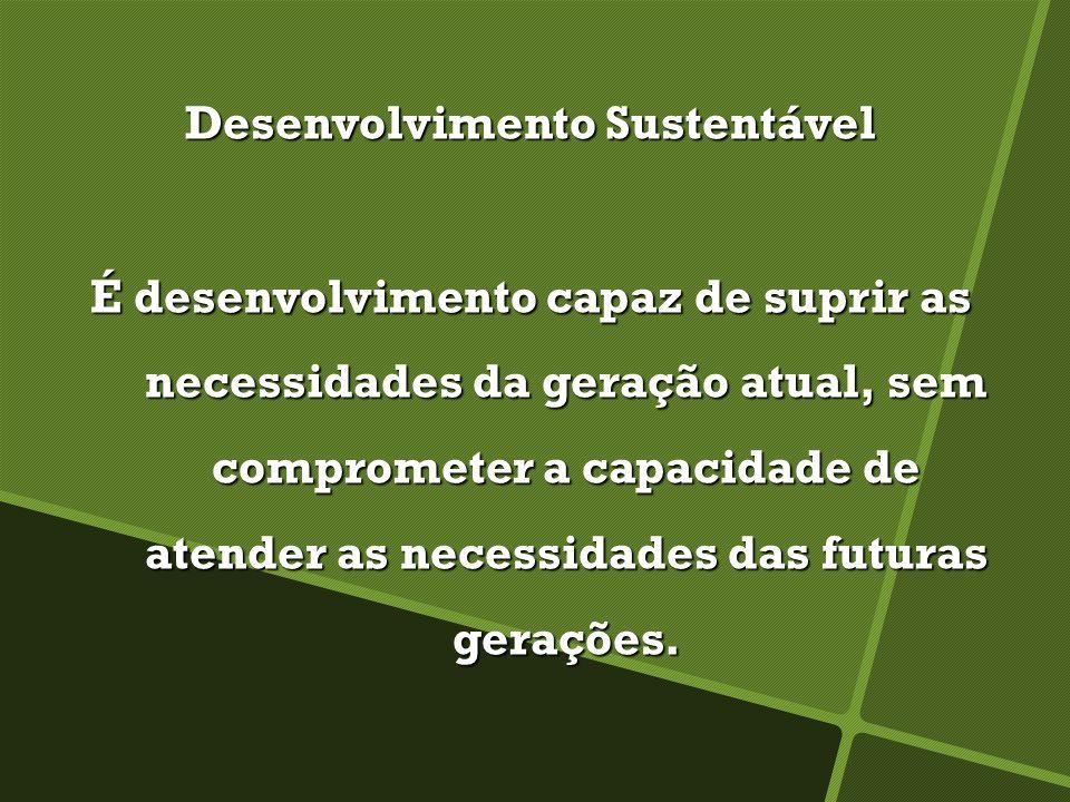 Desenvolvimento Sustentável É desenvolvimento capaz de suprir as necessidades da geração atual, sem comprometer a capacidade de atender as necessidades das futuras gerações.