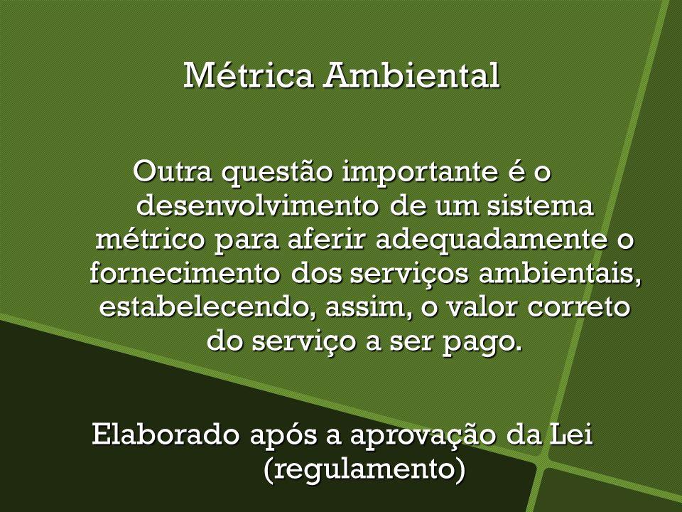 Métrica Ambiental Outra questão importante é o desenvolvimento de um sistema métrico para aferir adequadamente o fornecimento dos serviços ambientais, estabelecendo, assim, o valor correto do serviço a ser pago.