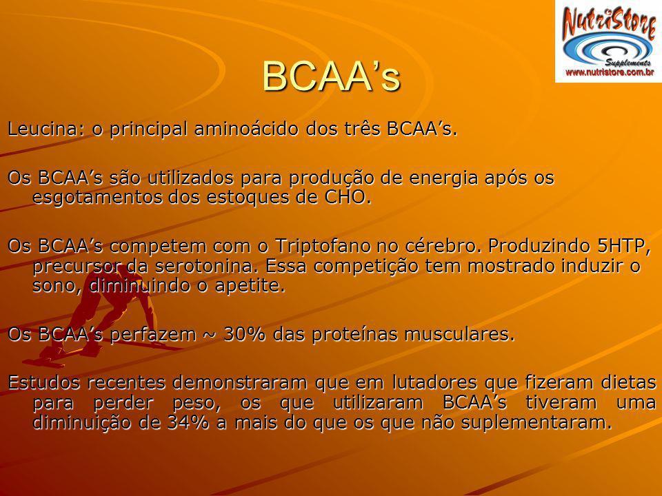 BCAAs Leucina: o principal aminoácido dos três BCAAs. Os BCAAs são utilizados para produção de energia após os esgotamentos dos estoques de CHO. Os BC