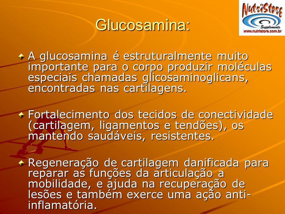 Glucosamina: A glucosamina é estruturalmente muito importante para o corpo produzir moléculas especiais chamadas glicosaminoglicans, encontradas nas c