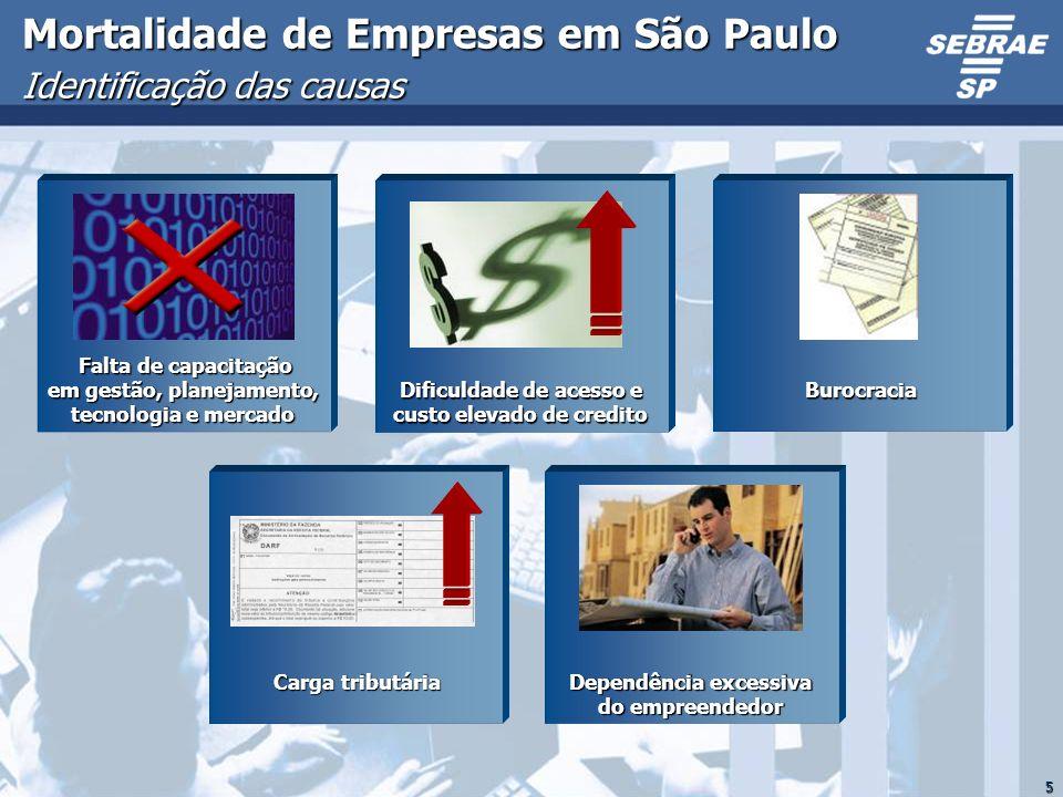 5 Mortalidade de Empresas em São Paulo Identificação das causas Falta de capacitação em gestão, planejamento, tecnologia e mercado Falta de capacitaçã