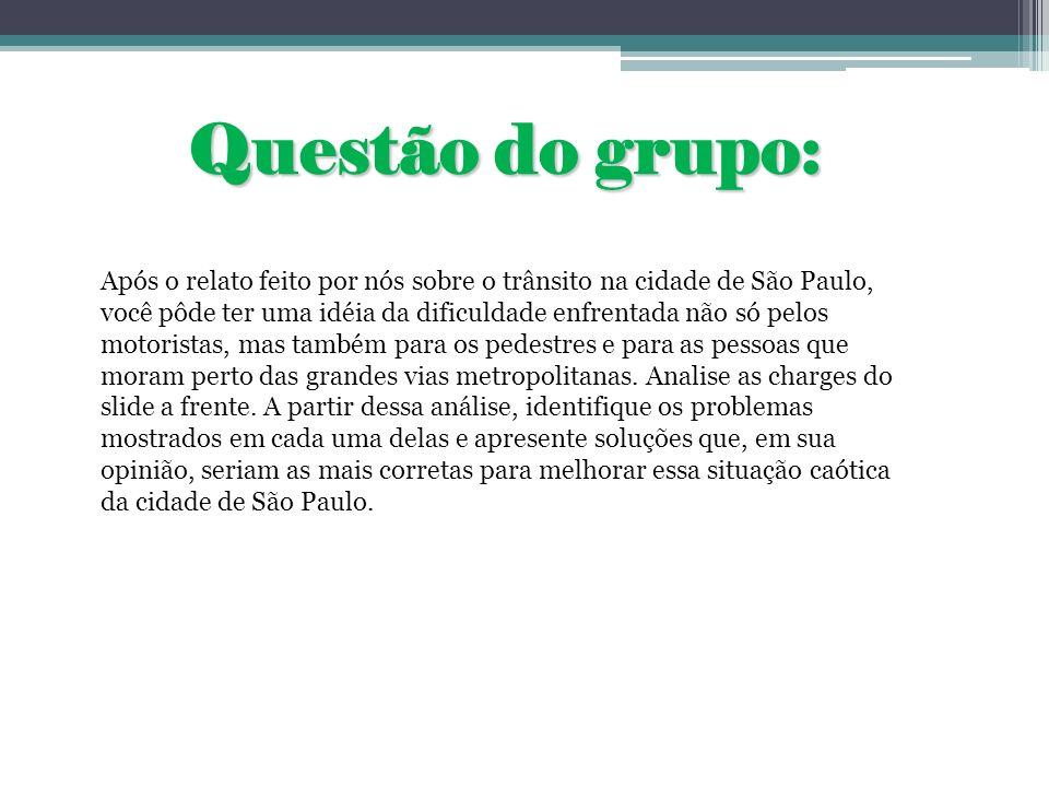 Questão do grupo: Após o relato feito por nós sobre o trânsito na cidade de São Paulo, você pôde ter uma idéia da dificuldade enfrentada não só pelos