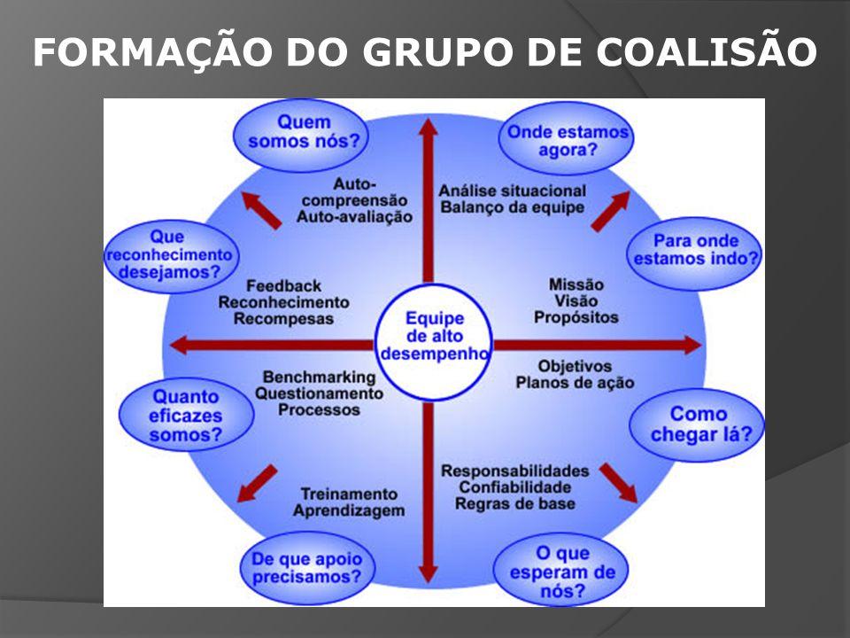 FORMAÇÃO DO GRUPO DE COALISÃO