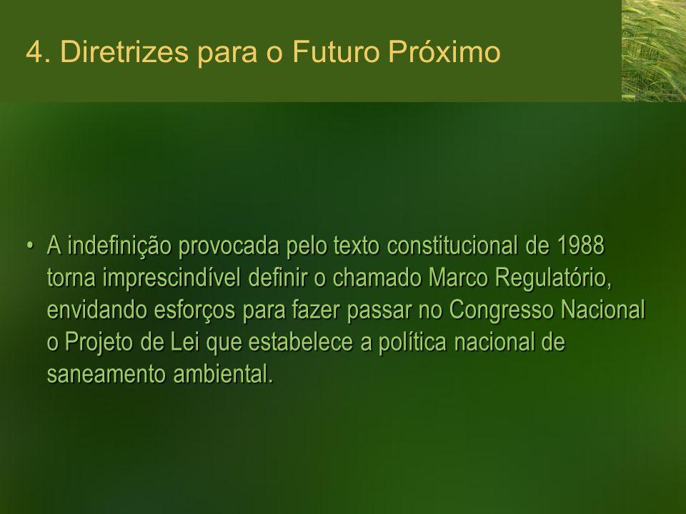4. Diretrizes para o Futuro Próximo A indefinição provocada pelo texto constitucional de 1988 torna imprescindível definir o chamado Marco Regulatório