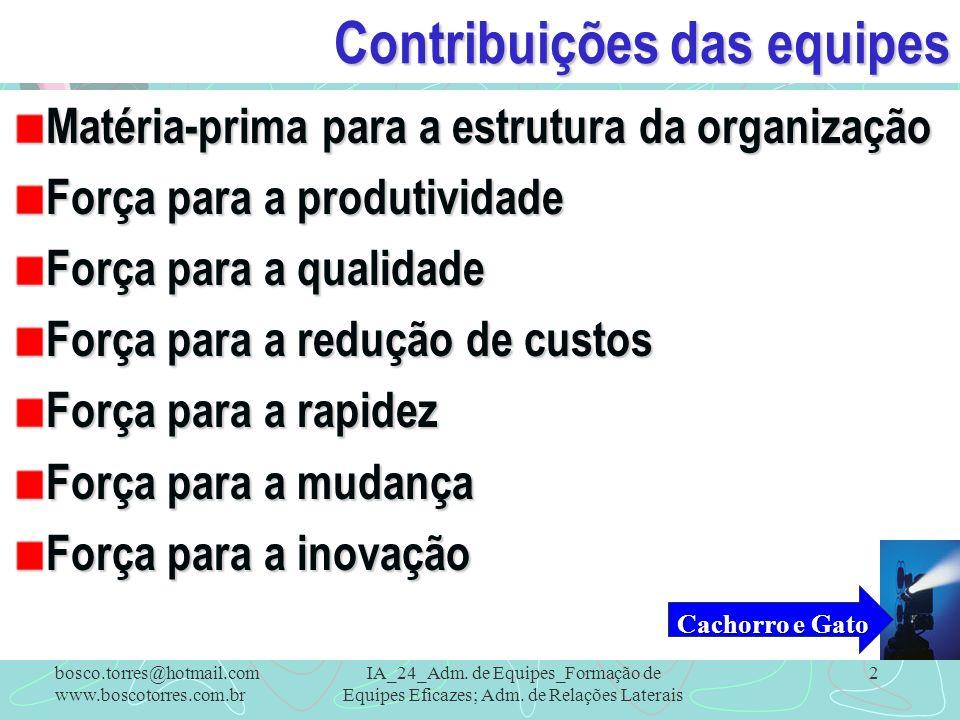 Contribuições das equipes Matéria-prima para a estrutura da organização Força para a produtividade Força para a qualidade Força para a redução de cust