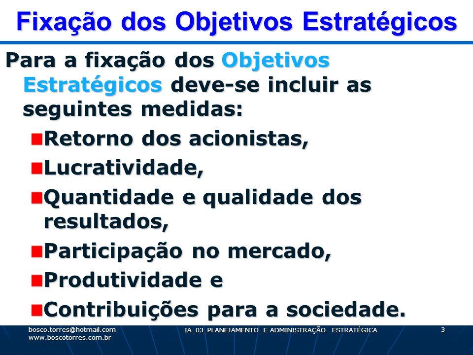 Fixação dos Objetivos Estratégicos Para a fixação dos Objetivos Estratégicos deve-se incluir as seguintes medidas: Retorno dos acionistas, Lucrativida